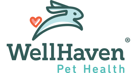 WellHaven Pet Health Downtown Vancouver